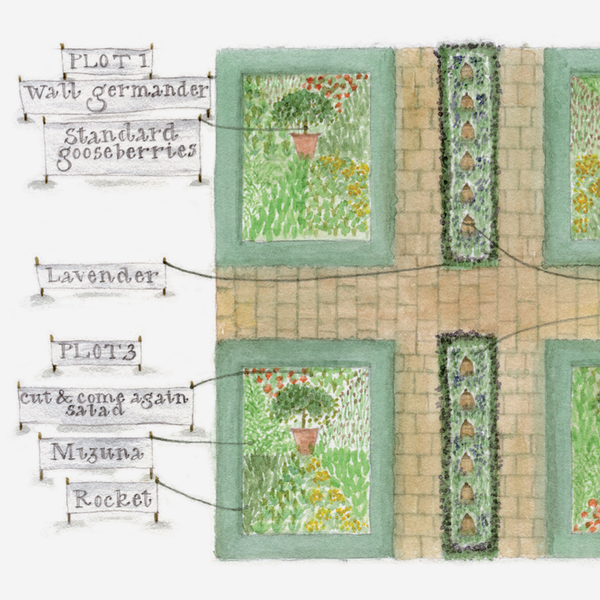 'Traditional Potager' Garden Card