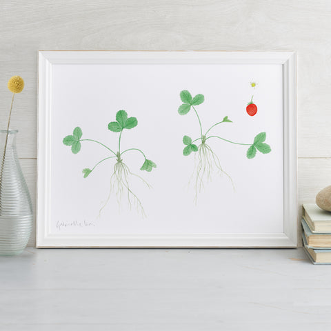 'Strawberries' Art Print