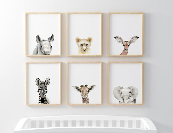 Full Set of Safari Baby Prints - The Originals