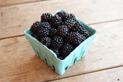 New Jersey Blackberries