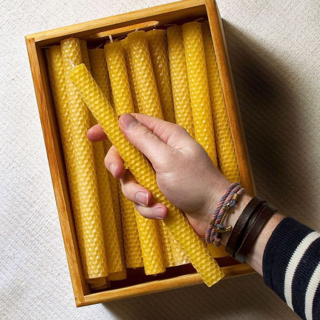 Apis Cera x Invited: Hand-Rolled Beeswax Candles – box of 9