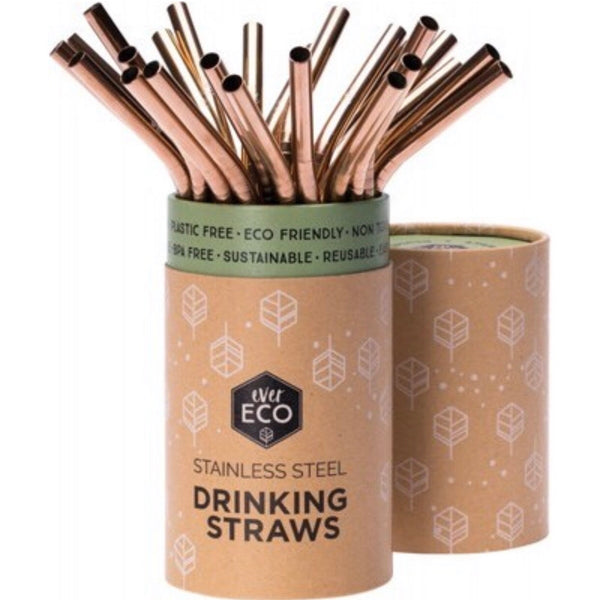 Individual Reusable Stainless Steel Straws