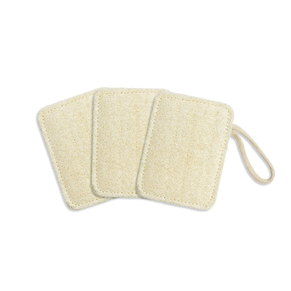 Seed and Sprout Compostable Kitchen Loofahs Set of 3
