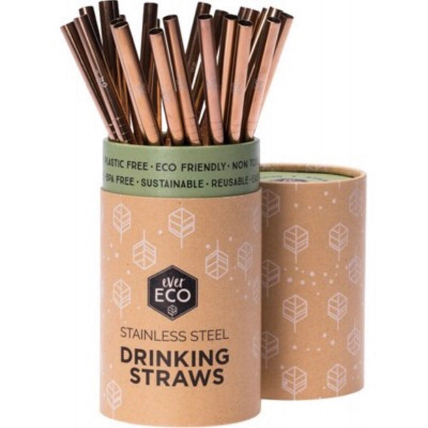 Ever Eco Individual Reusable Stainless Steel Straws