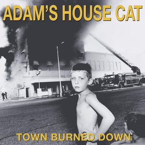 Adam's House Cat - Town Burned Down LP