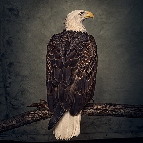 Clutch - Book of Bad Decisions 2LP