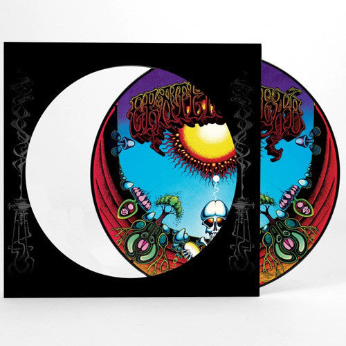 Grateful Dead - Aoxomoxoa LP (Picture Disc)