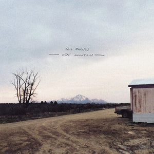 Will Johnson - Wire Mountain LP