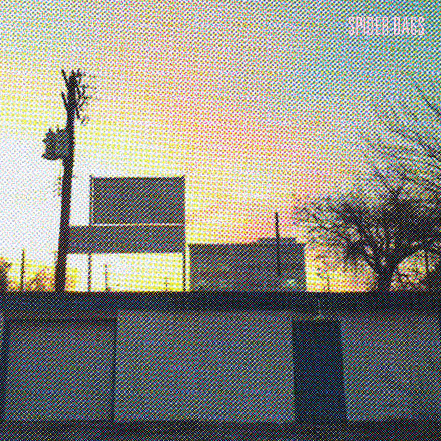 Spider Bags - Someday Everything Will Be Fine LP