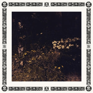 Sarah Davachi - Pale Bloom LP
