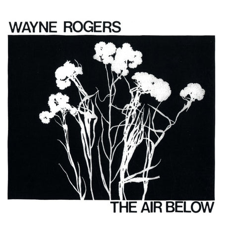 Wayne Rogers - The Air Below LP
