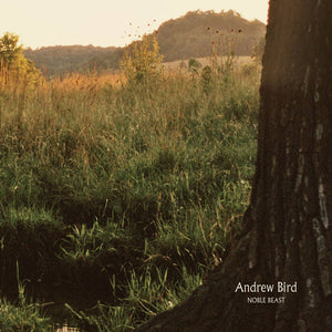 Andrew Bird - Noble Beast 2LP