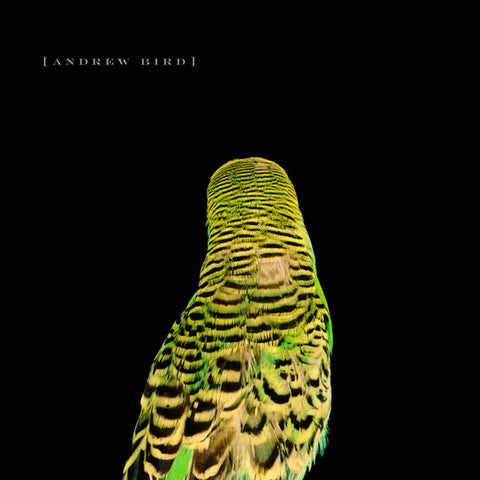 Andrew Bird - Armchair Apocrypha LP