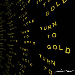 Diarrhea Planet - Turn to Gold LP