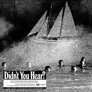 Mort Garson - Didn't You Hear? LP (Ltd Silver Vinyl Edition)