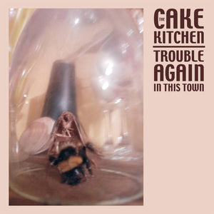 The Cakekitchen - Trouble Again in This Town LP