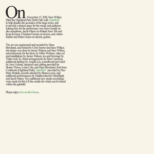 Sam Wilkes - Live on the Green LP