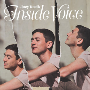 Joey Dosik - Inside Voice LP