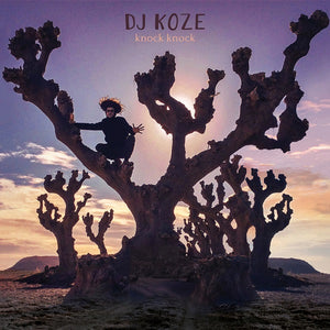 DJ Koze - Knock Knock 2LP