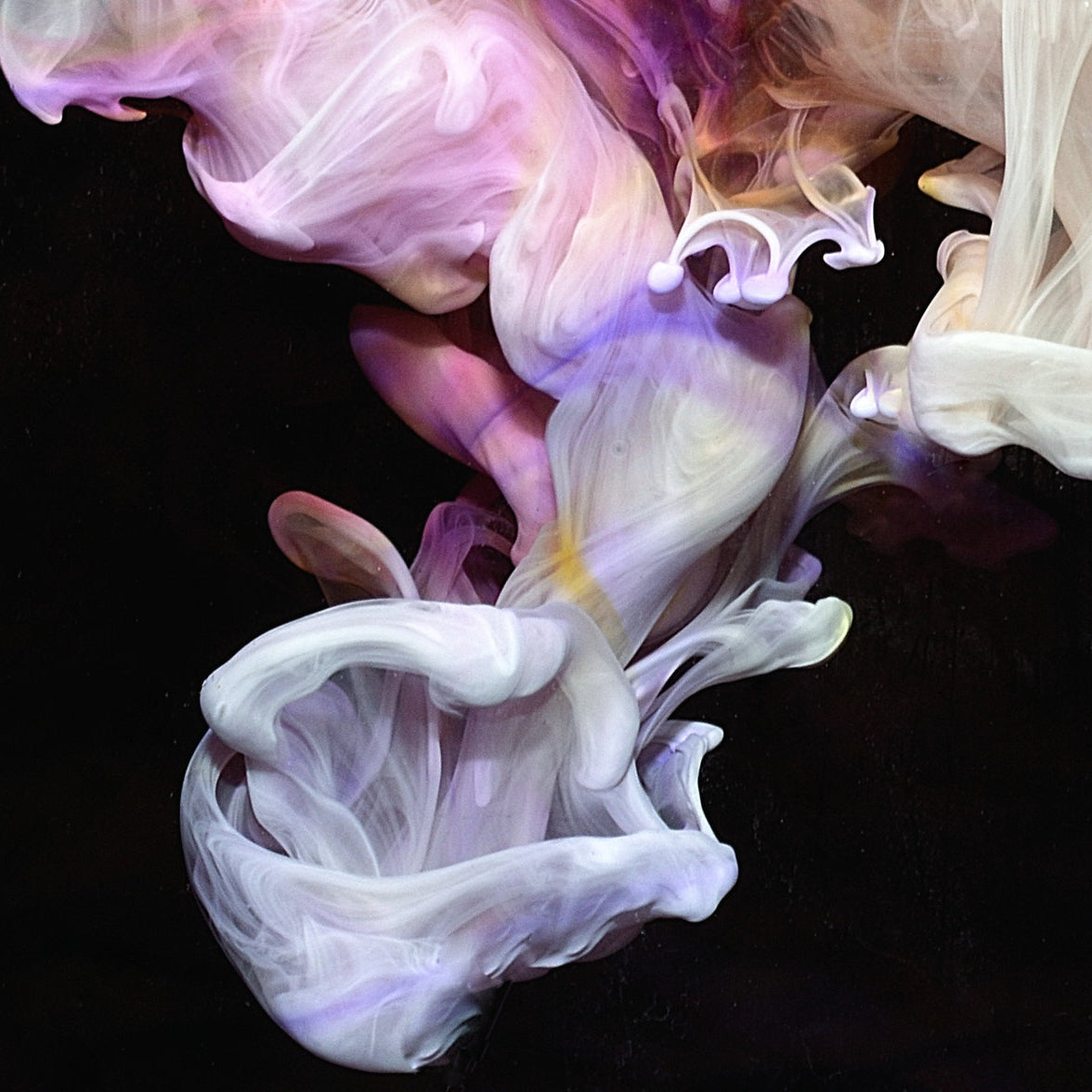Simian Mobile Disco - Murmurations 2LP