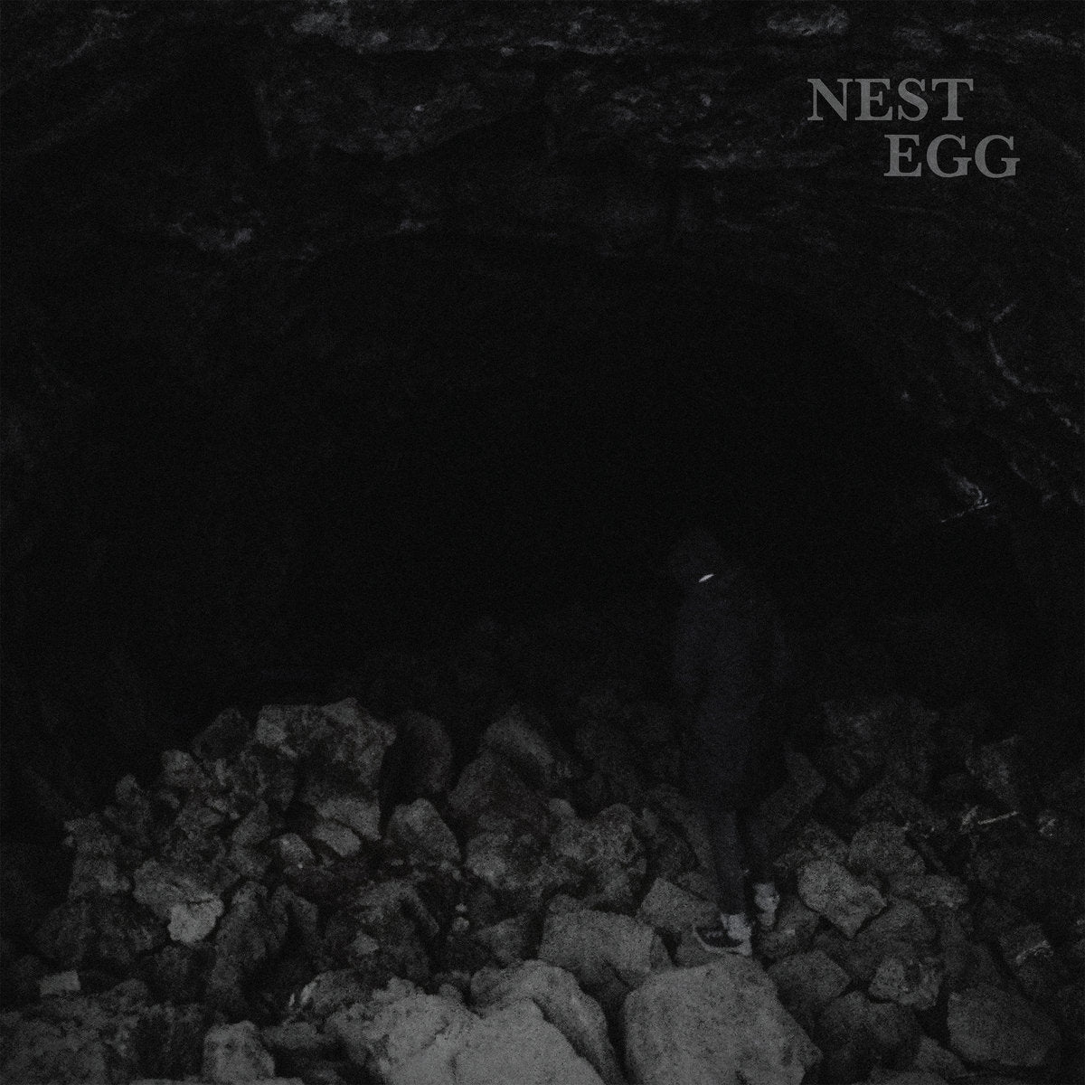 Nest Egg - Nothingness Is Not a Curse LP