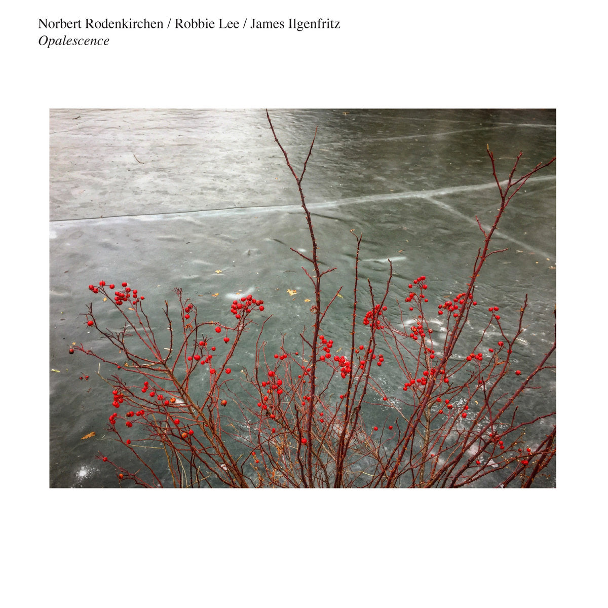 Norbert Rodenkirchen / Robbie Lee / James Ilgenfritz - Opalescence LP
