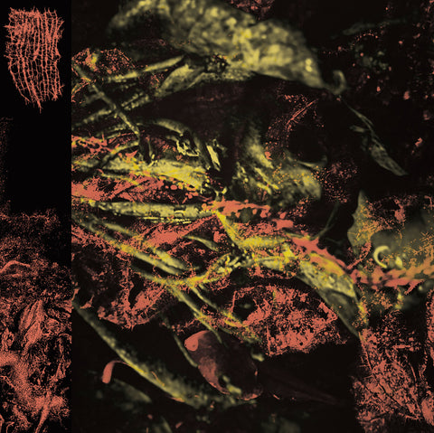 Hissing - Permanent Destitution LP