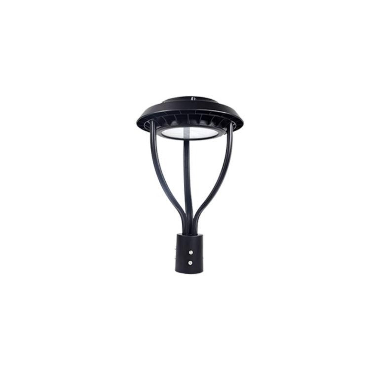 LED Post Top Fixture 100W - Dragon Picture