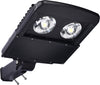 Type V LED COB 100w Fixture - Dragon Picture