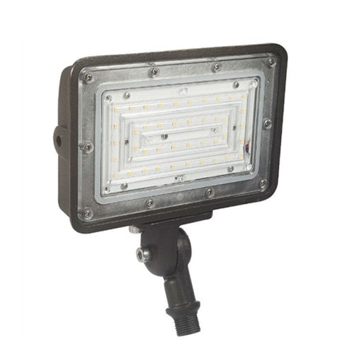 LED Flood Fixture 30W - Dragon Picture
