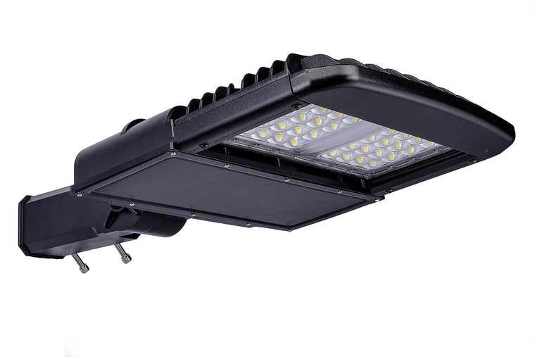Type III LED SMD 100w Fixture - Dragon Picture