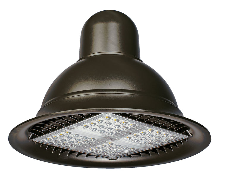 LED RDS Type III 150W Fixture - Dragon Picture