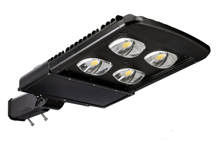 Type III LED COB 150w Fixture - Dragon Picture