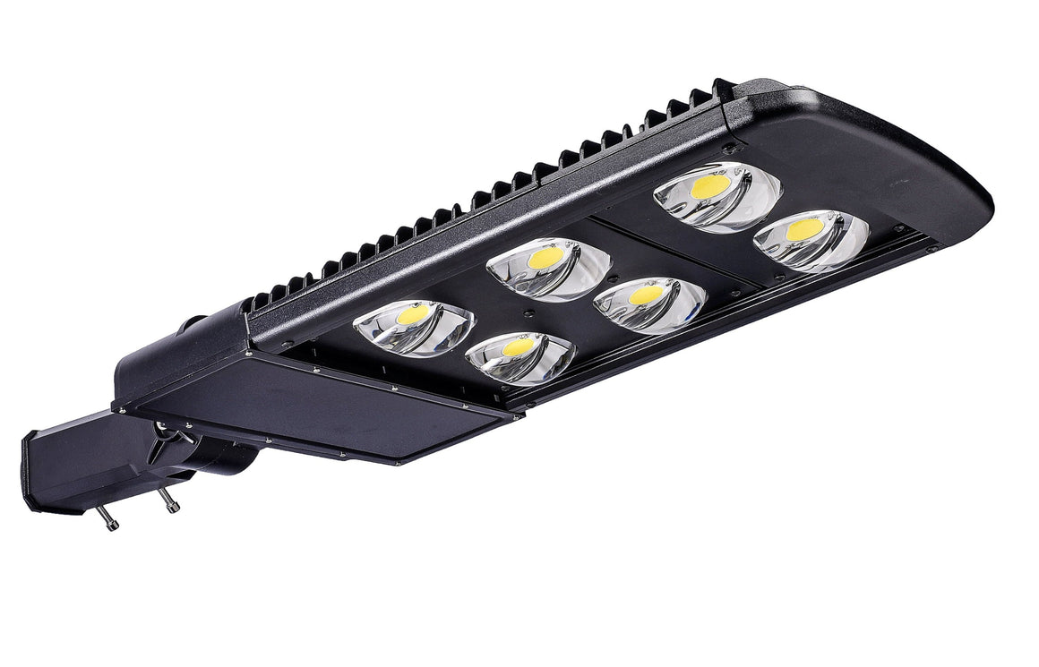 Type III LED COB 240w Fixture - Dragon Picture