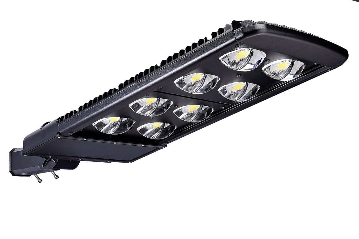 Type III LED COB 300w Fixture - Dragon Picture