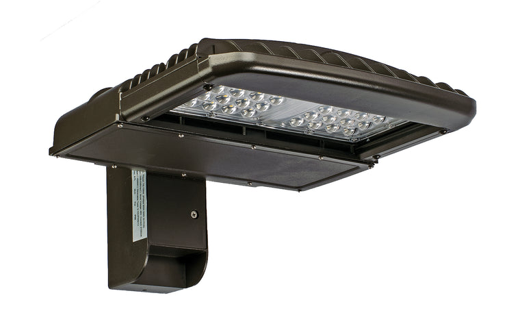 Type III LED SMD 100w Fixture - 4000k - Dragon Picture
