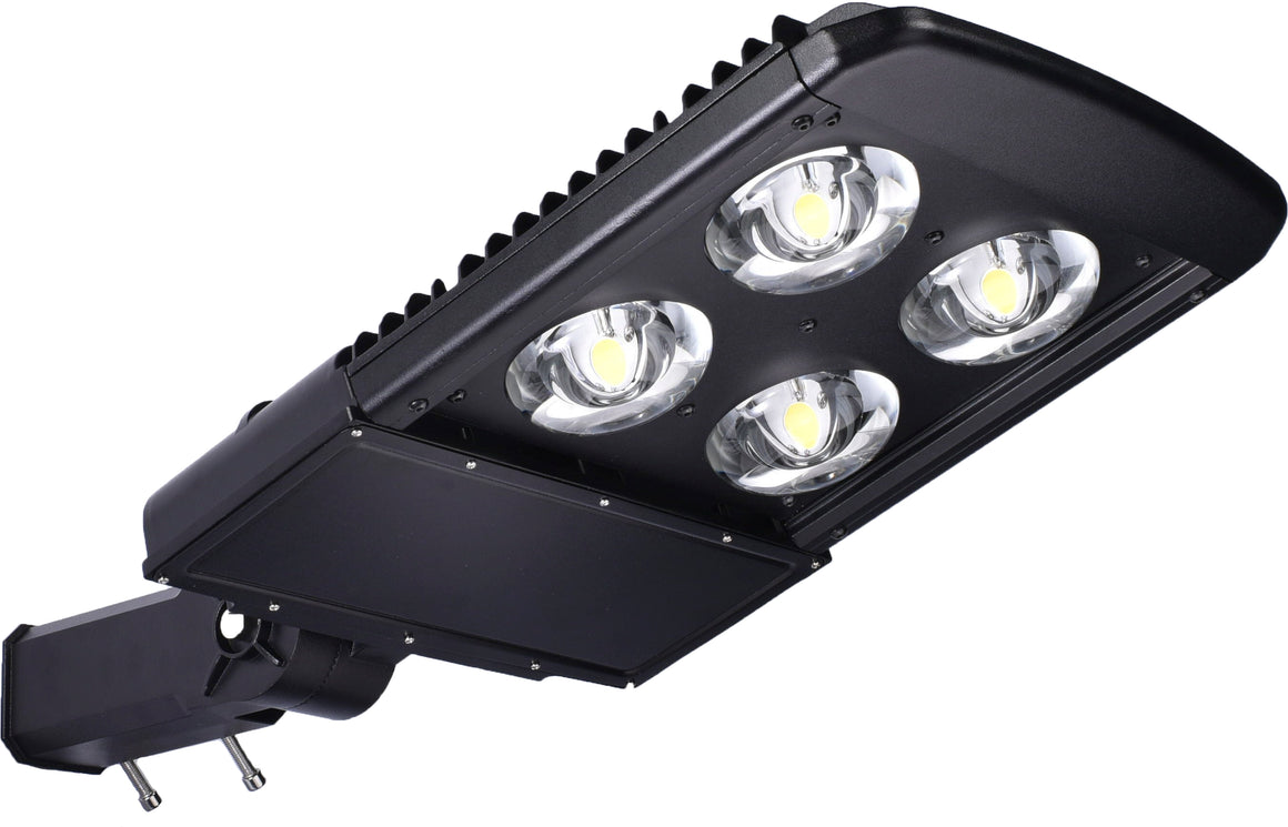 Type V LED COB 150w Fixture - Dragon Picture