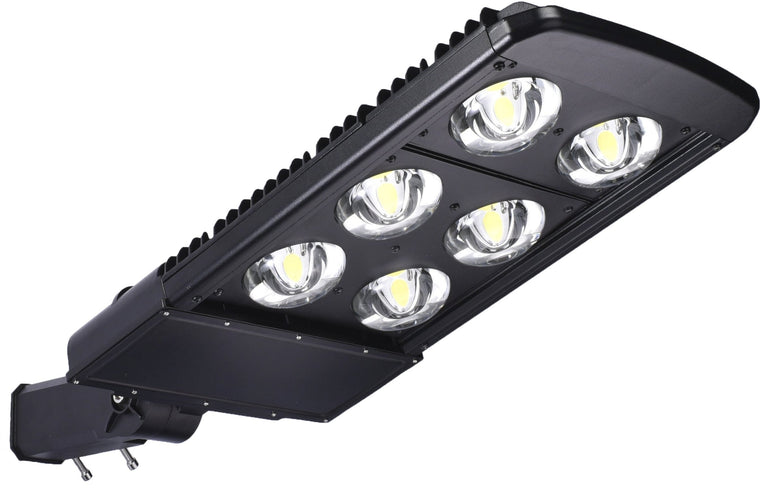 Type V LED COB 240w Fixture - Dragon Picture