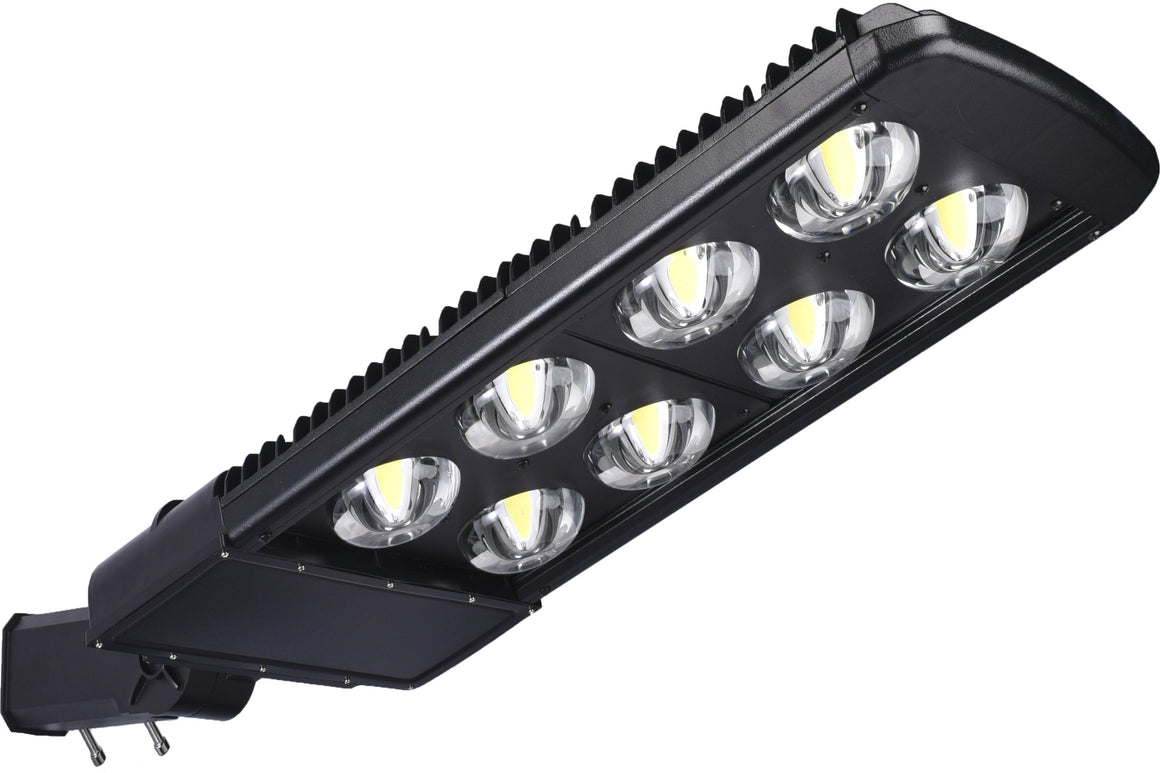 Type V LED COB 300w Fixture - Dragon Picture