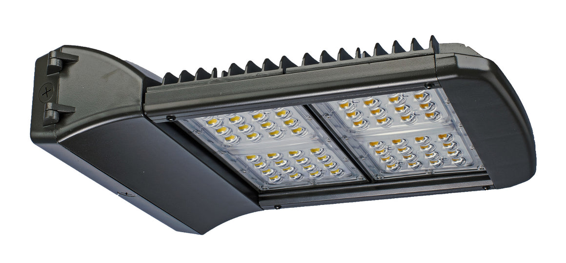 150w LED Wallpack - Dragon Picture