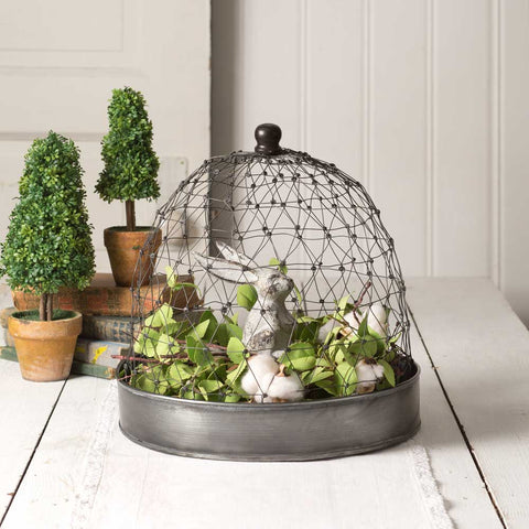 French Chicken Wire Cloche with Tray - Living Roots Decor