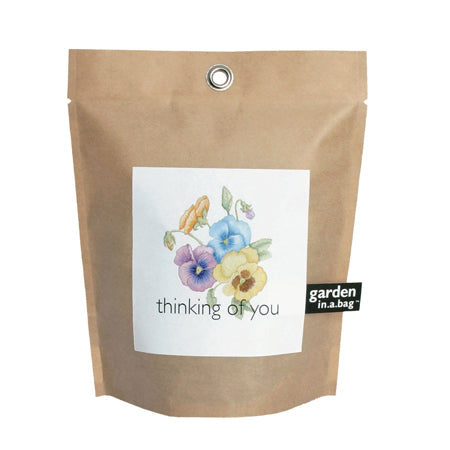 Potting Shed Creations - Thinking Of You Garden In A Bag