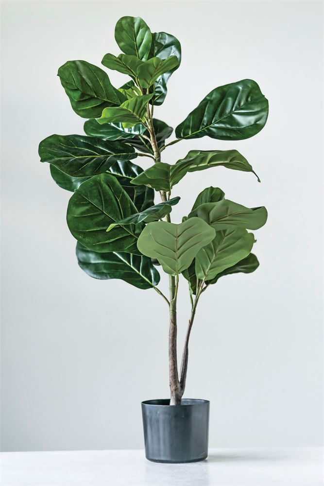 Faux Fiddle Fig Leaf Plant in Pot - Living Roots Decor