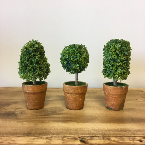 artifical topiary in small pot Living Roots Home Decor