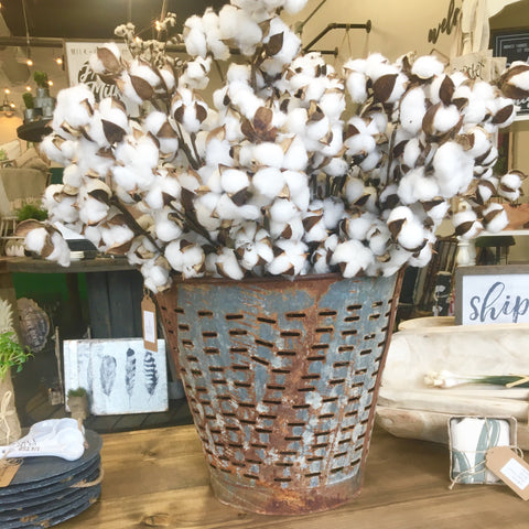 "29"" cotton boll stem farmhouse style Living Roots Home Decor Covington Ga"