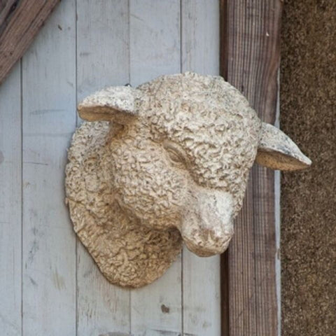 Lamb Head - Living Roots Decor