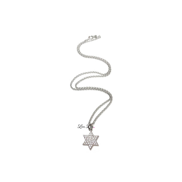 Amy's Stunning Star of David Necklace