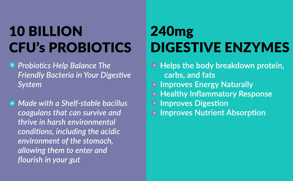 protein powder,probiotics,enzymes