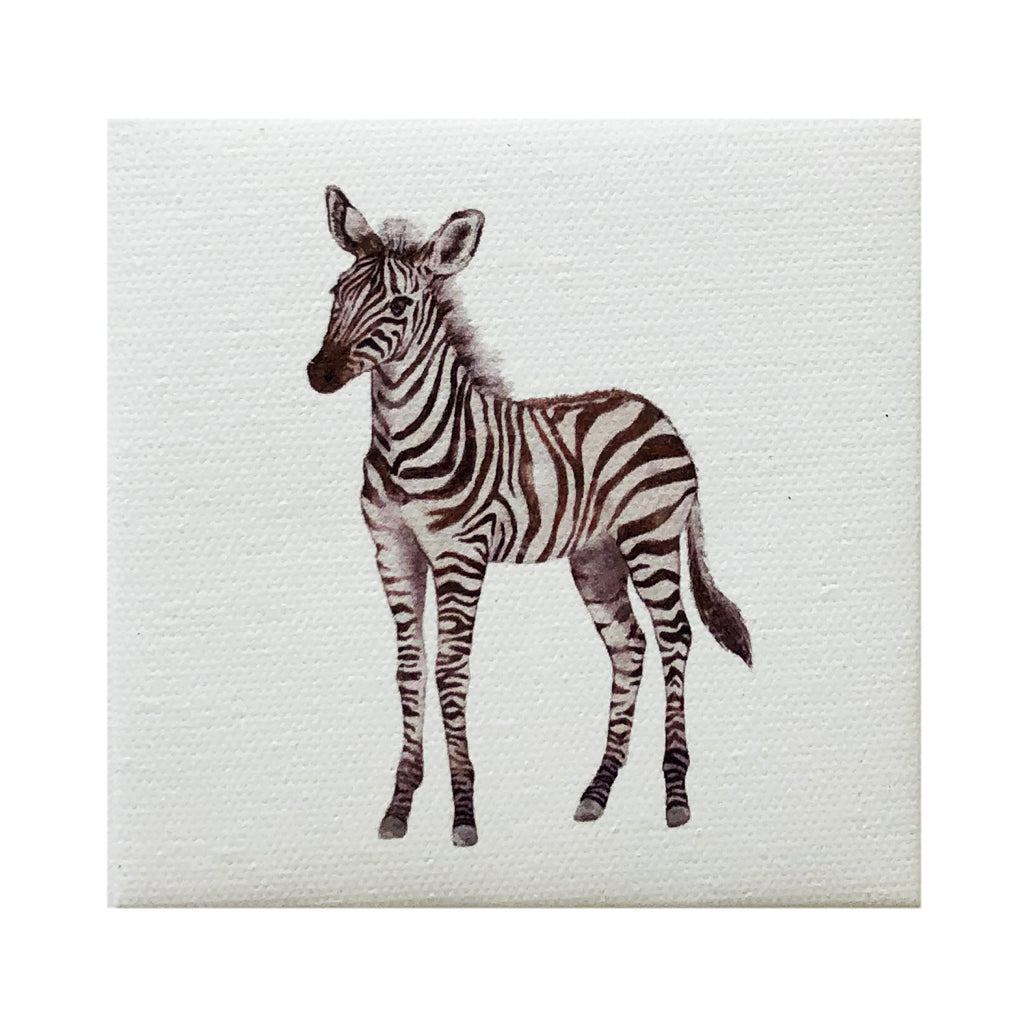 Canvas Magnet Kids Zebra