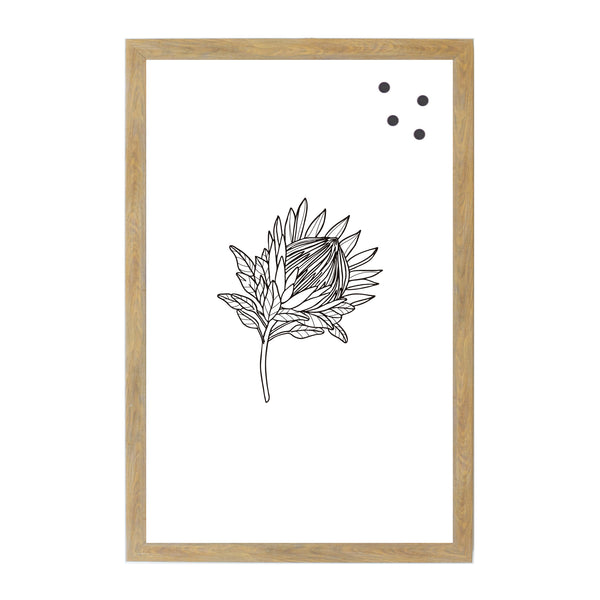 Australia Flower Botanical Line Drawing